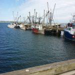 Marina at Provincetown